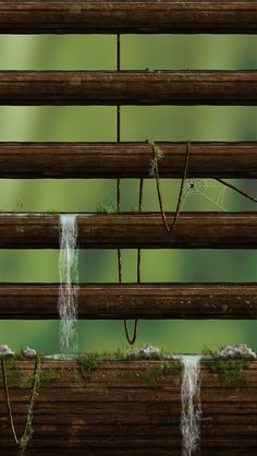 !!TAP AND GET THE FREE APP! Shelves Homescreens Nature Wooden Water Green Blurred Grass HD iPhone 5 Wallpaper