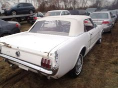 Fantastic 65 Ford Mustang For Sale Cheap 11 About Remodel Small Car Wallpaper Ideas with 65 Ford Mustang For Sale Cheap Sn95 Mustang, Ford Mustang For Sale, Ford Mustang Fastback, Ford Mustangs, Shelby Gt500, Project Cars For Sale, Best Cars For Women, Cheap Cars For Sale, Ford Convertible