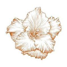 Gladiolus Flower Tattoo 1