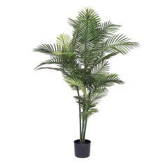 """60"""" Artificial Robellini Palm Tree"""