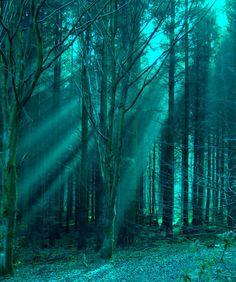 Moon beams - ©Max Photoimage (via Panoramio)