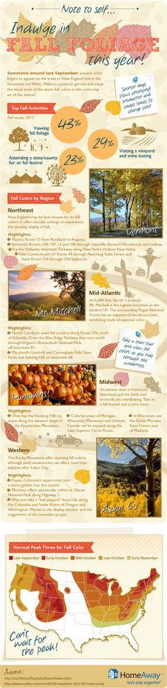 Fall Foliage infographic - plan your fall camping trips around the best time to see the leaves change!