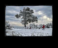 La nevada desde Conserola