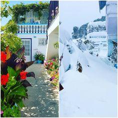 Summer 2017 Vs Winter 2017 www.angelosalonissos.com #angelos_apartments #alonissos #sporades #greece  #flowers #snow #entrance