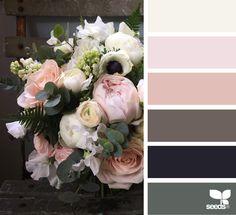 Explore Design Seeds color palettes by collection. Design Seeds, Colour Pallete, Colour Schemes, Color Combos, Color Palettes, Color Harmony, Color Balance, Tuscan House, Deco Design