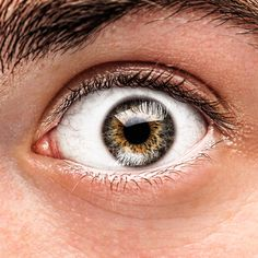 מה אתם יודעים על גלאוקומה? בהתחלה המחלה אינה מורגשת, ורק בשלב מתקדם של גלאוקומה מופיעה פגיעה ממשית בשדה הראייה. מומלץ לבצע בדיקה לזיהוי מוקדם של גלאוקומה באופטיקה טל: http://www.optica-tal.co.il/glaucoma.aspx