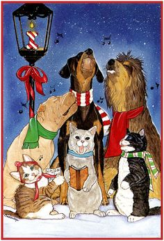 Everybody Sharing Christmas!  (cat is holding a book)