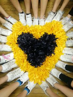 Cheer team picture have the pom poms be the school colors. Ours would be gold and navy blue