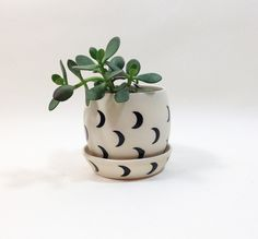 Crescent Moon Small Planter with Plate - Small Spells Moon Plant, Outside Plants, Yellow Umbrella, Black Moon, Ceramics Projects, Large Planters, Clay Pots, Feng Shui, Planting Flowers