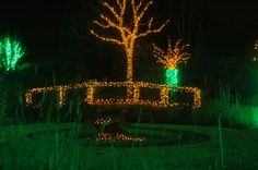 Be sure to walk along our light covered bridge during Holidays at the Garden 2013, at Daniel Stowe Botanical Garden