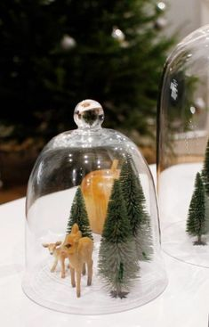 bell jars, bell jar bell jars bell jars, cloche jar ideas, decorating with glass cloches, bell jars Christmas Abbott, Christmas Jars, Christmas Movies, Diy Christmas Gifts, Christmas Lights, Christmas Stockings, Christmas Holidays, Christmas Decorations, Holiday Decor