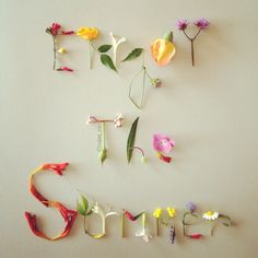 Enjoy the Summer! Flower Words, Flower Quotes, Flower Art, Wedding Flower Inspiration, Wedding Flowers, Crotons Plants, Seasons Months, Zombies, Month Flowers