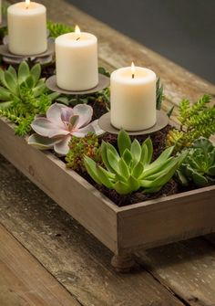 Candle and Centerpiece Planter . Dining Table Decor Centerpiece, Outdoor Table Decor, Dining Room Table Decor, Succulent Centerpieces, Candle Centerpieces, Deco Table, Decoration Table, Centerpiece Decorations, Candles