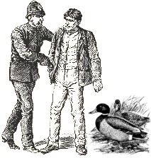 New page on Legendary Dartmoor - The two Ducks
