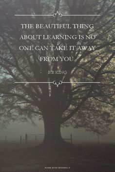 The beautiful thing about learning is no one can take it away...  #powerful #quotes #inspirational #words