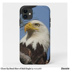 Ipod Touch Cases, Ipod Cases, New Iphone, Apple Iphone, Unique Iphone Cases, Iphone Models, Artwork Design, Plastic Case, Bald Eagle