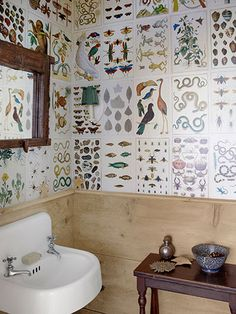 pages from a reprint of 'Cabinet of Natural Curiosities' cover this powder room.