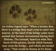 Native American Animalism.  My beliefs are based on Christian faith as well as spiritual and ethical bits of Native American and Buddhist ideas.