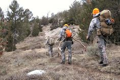 Rifle elk hunting on public land usually takes place in the post-rut and late season periods. A few lucky folks will draw a tag during the rut hunts, but this Elk Hunting Tips, Bow Hunting Deer, Quail Hunting, Big Game Hunting, Pheasant Hunting, Hunting Rifles, Eat Sleep, Wildlife, Survival