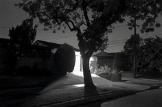 Henry Wessel, Night Walk No. 45, 1998.