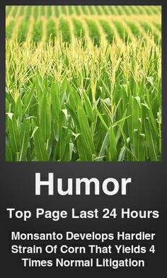 Top Humor link on telezkope.com. With a score of 8844. --- Monsanto Develops Hardier Strain Of Corn That Yields 4 Times Normal Litigation. --- #humor --- Brought to you by telezkope.com - socially ranked goodness
