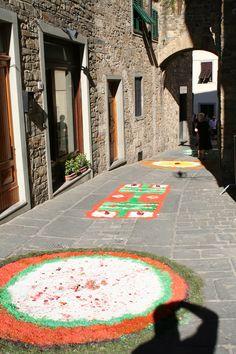 Flowers near Porta Senese, Italy