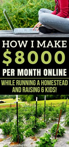 Make Money from Home! As a homesteader I am always looking for ways to work from home. Learn the #1 way we make money from home online. Start a Blog | Blogging for Beginners | Work at Home