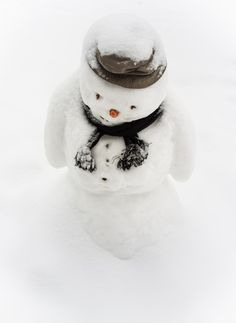 Photo - Created with BeFunky Photo Editor I Love Winter, Winter Colors, Winter Day, Winter White, Christmas Colors, Winter Christmas, Merry Christmas, Black Christmas, Frosty The Snowmen