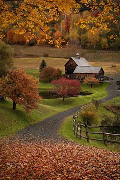 Reminds me of Granny Farkle's who lived on the Carlisle, Ky....gently rolling hills with farm houses nestled in the valleys.