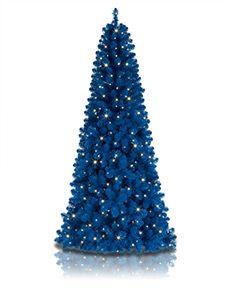 Colorful Christmas Trees on Sale   Treetopia