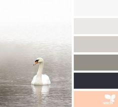 graceful tones   design seeds   Bloglovin'