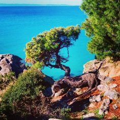 raw beauty is truly breathtaking, blending blue and green colors to perfection! Beach Hotels, Beach Resorts, Raw Beauty, Vacation Destinations, Green Colors, Greece, Relax, Water, Summer