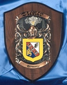 Knight Single Shield Coat of Arms