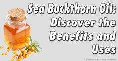 Learn more about sea buckthorn oil – its uses, benefits, and composition – and how this herbal oil may have potential anti-aging effects.   http://articles.mercola.com/herbal-oils/sea-buckthorn-oil.aspx