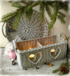 basket & tray