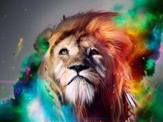 Leeuwe kleuren..
