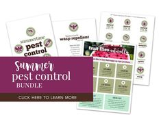 The Best Wasp Repellent Plants -  Here are the best wasp repellent plants to include in your landscaping that are gorgeous and also keep those nasty wasps away without toxic chemicals. With kids and pets, it's always better to use natural … Bug Control, Pest Control, Natural Wasp Repellent, Homemade Tick Repellent, Wasp Deterrent, Insect Repellent Plants, Plants That Repel Bugs, Bees And Wasps, Beneficial Insects