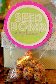 We are going to make seed bombs and sell them for the children to learn For Me, For You, For Later.