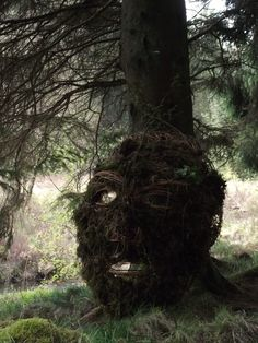 Giants in the Forest - an art installation near where I live in Dumfries and Galloway, Scotland
