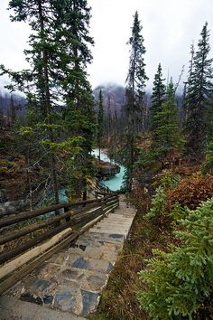 Marble Canyon Provincial Park inside of Kootenay National Park, British Columbia, Canada.  Photo: orbital-vancouver, via Flickr