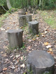 #Steppinglogs #Childrens #Playscape #NationalTrust.