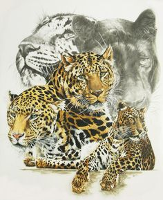 Elusive Painting by Barbara Keith