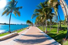 walkway in a the beautiful park south pointe in miami beach florida Miami Beach, Miami Florida, South Beach, South Florida, Palm Beach, Key West, Dream Vacations, Vacation Spots, Dolphin Mall