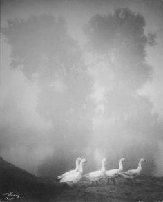 Photo by Edward Hartwig - Poranna Parade, 1928. S)