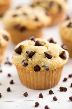 Muffin Recipes 99979 These Easy Chocolate Chip Muffins are just like mom used to make! The batter comes together in just minutes for an easy muffin that's perfect for breakfast or brunch. Chocolate Chip Cookies, Best Chocolate Chip Muffins, Chocolate Recipes, Chocolate Chocolate, Peanut Butter Muffins, Chocolate Chip Bread, Muffin Recipes, Baking Recipes, Dessert Recipes