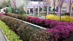 More Pictures from The Philadelphia Flower Show! | Kremp Florist Blog