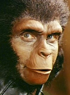 Dr. Zira ape face appliance | fantasy makeups | beasts | apes & apewomen | 'Planet of the Apes ...