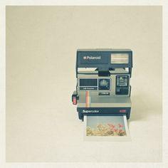 polaroid: vintage polaroid