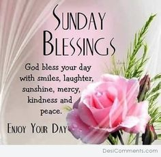 266 Best Sunday Images Good Morning Quotes Happy Sunday Quotes