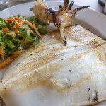 Pan seared Calamari steaks are a high protein very healthy main dish. Seafood Recipes, Diet Recipes, Cooking Recipes, Healthy Recipes, Calamari Steak Recipes, Grilled Calamari, Whole 30 Recipes, Clean Recipes, Pan Seared Steak